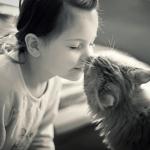 Anche i gatti si affezionano ai loro padroni. Come i bambini con i genitori